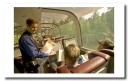 Alaskan Railroad - Cruise and Tour Planners