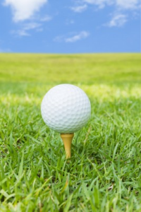 Golf and Business - Cruise and Tour Planners