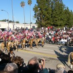Beautiful horses in the Rose Bowl Parade - Cruise and Tour Planners