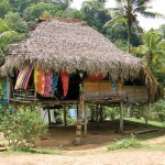 Image of Embera Village in Panama - Cruise and Tour Planners