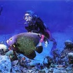 Image of Enjoy amazing diving on Barbados - Cruise and Tour Planners