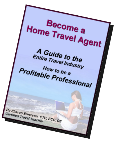 Become A Home Travel Agent